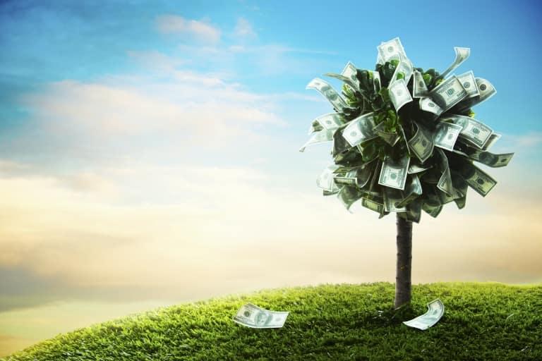 fa pénz levelekkel